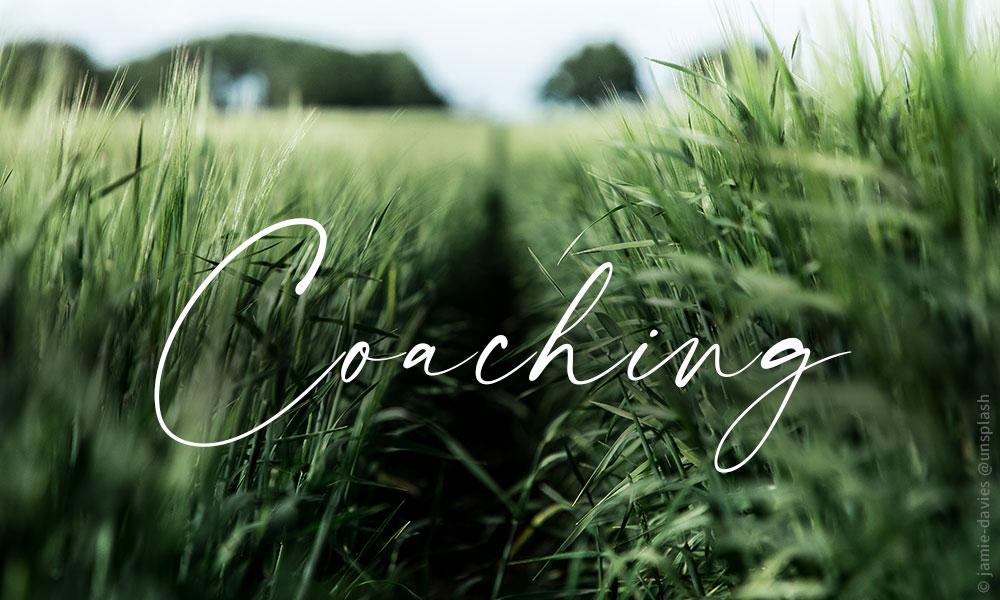 Holistisches Marketing Coaching